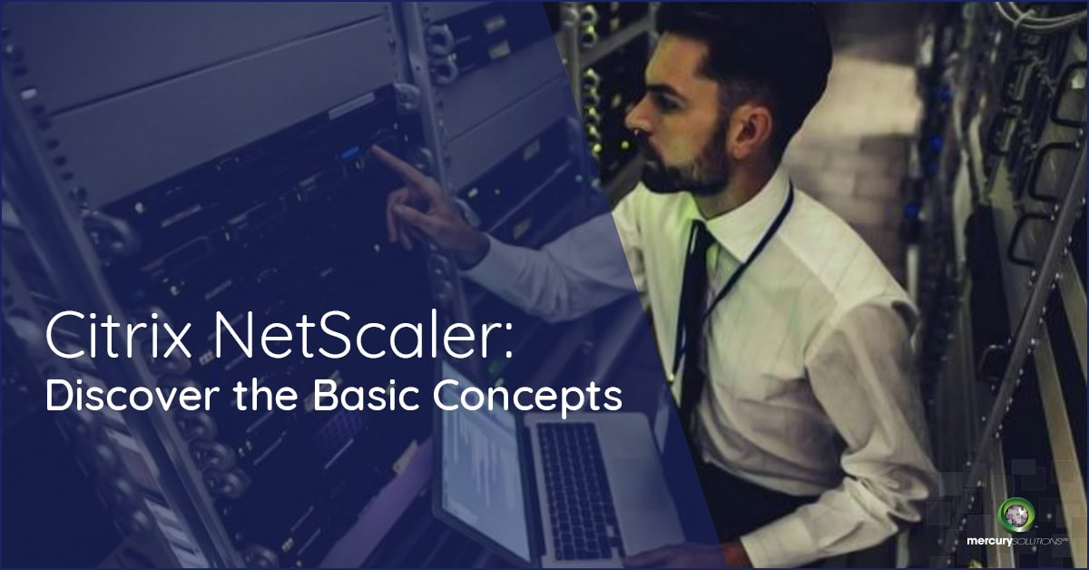 Citrix NetScaler: Discover the Basic Concepts