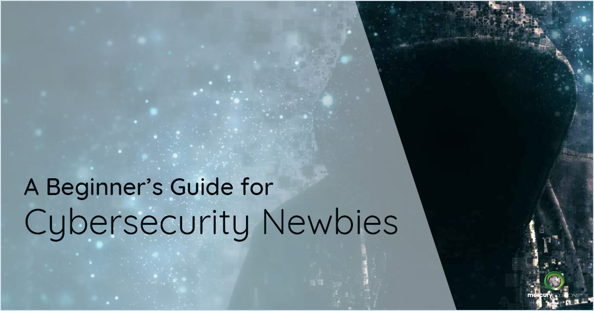 A Beginner's Guide for Cybersecurity Newbies